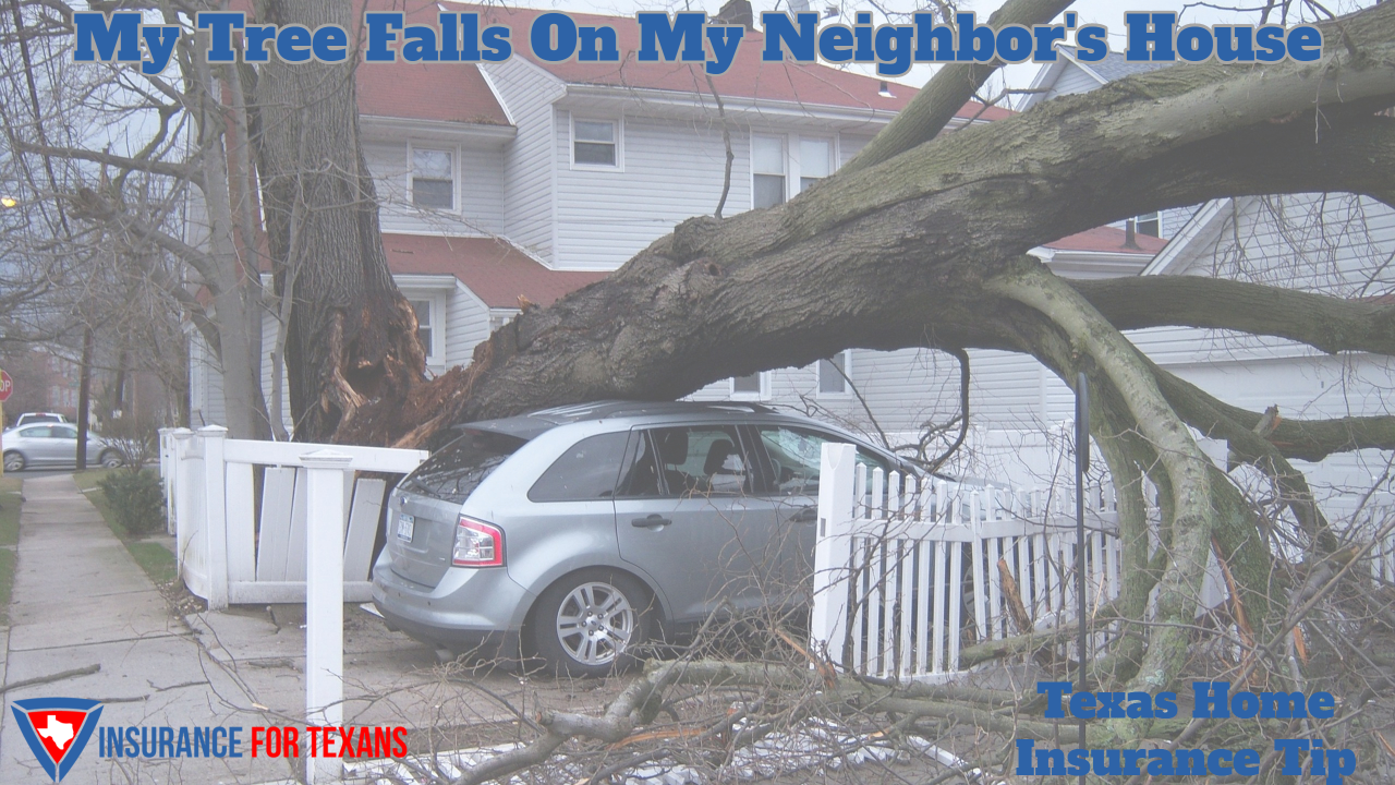 My Tree Falls On My Neighbors House, which home insurance is responsible?